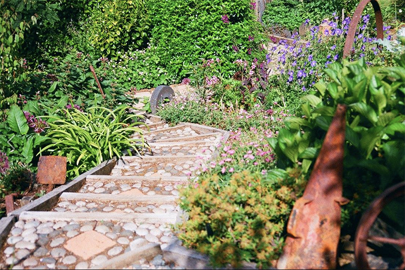 path through plants at garden on Mull