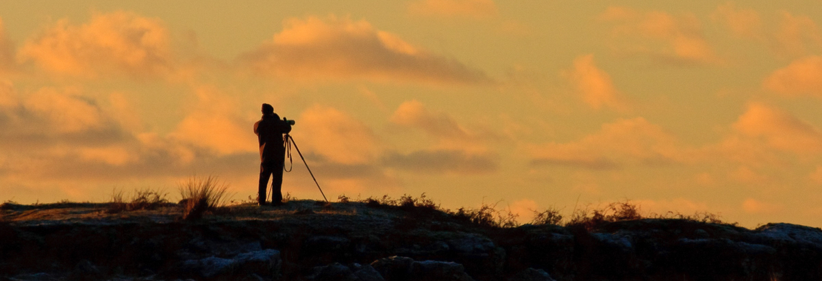 Person with telescope on Mull, looking out for winter wildlife