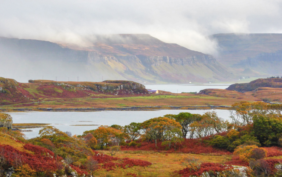 Autumn on Mull can be spectacular, from its starry, dark skies to the changing colours of the landscape and the wildlife waiting to be discovered...