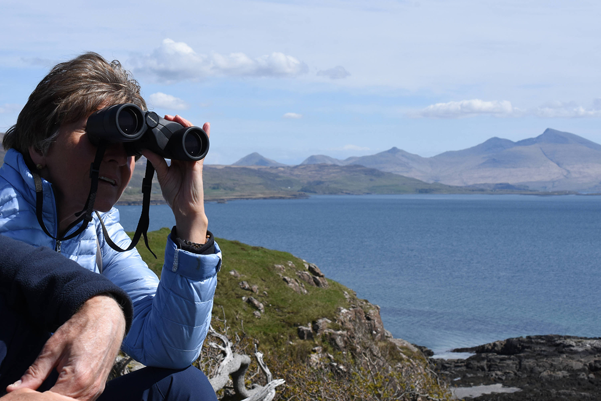 Discover the huge variety of Isle of Mull nature you could see, from otters to dolphins, seals to sea eagles, and learn about their habitats.
