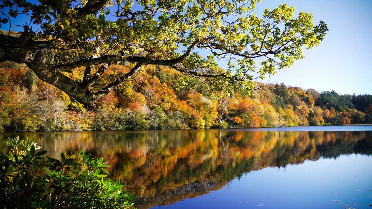 Take a woodland walk around the loch at Aros Park when you visit Mull in autumn.