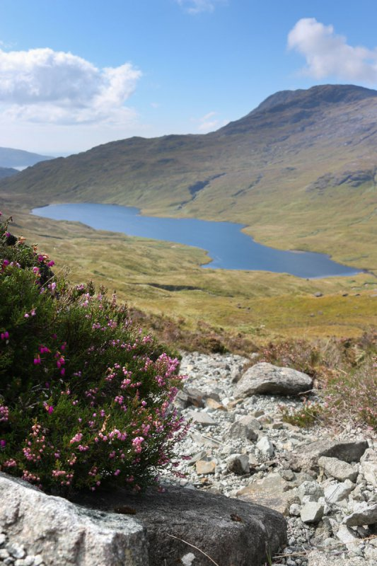 Best walks on the Isle of Mull - three lochs