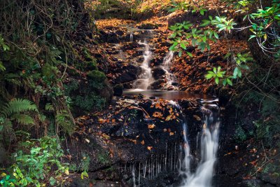Discover cascading waterfalls, burns and pools in the grounds of the cottage