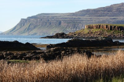Ross of Mull coastline close to the cottage