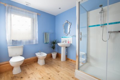 Ground floor family bathroom with large walk in shower