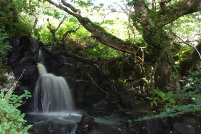 Waterfall close to the lodges