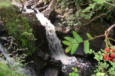 Waterfall in the woodland to the rear of the cottage