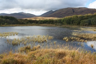 Loch Doire Dharaich located on the hill above Brightwater Lodge