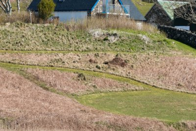 The Steading as seen from across the loch