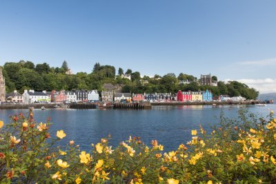 Tobermory harbour in summer