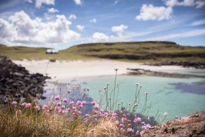 Seek out one of the beautiful beaches in north Mull