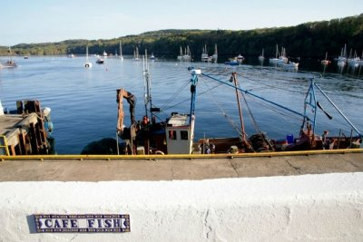 Cafe Fish | Tobermory