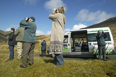 Guided Wildlife Tours
