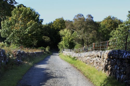 Road leading to Kate's Cottage